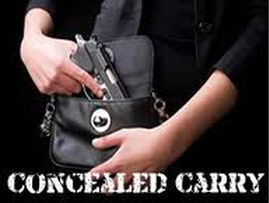 Concealed Carry